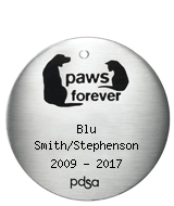 PDSA Tag for Blu Smith/Stephenson