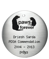PDSA Tag for Driesh Sarda PDSA Commendation