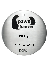 PDSA Tag for Ebony