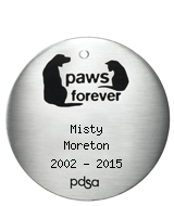 PDSA Tag for Misty Moreton